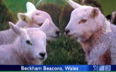 Beckham Beacons.jpg